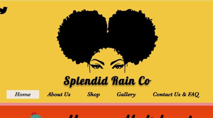 Splendid Rain Co. is a NJ based brand that makes apparel for black women.