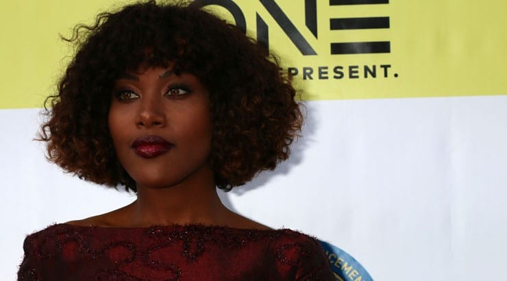 Starting her acting career in 2006, DeWanda Wise appeared in small roles in movies like Precious and TV shows like Law & Order and Boardwalk Empire.
