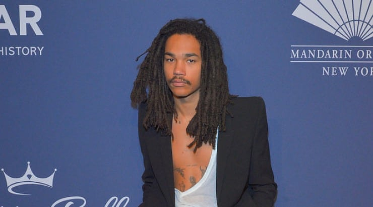 Luka Sabbat was discovered at 15 in New York City before focusing on acting and producting.