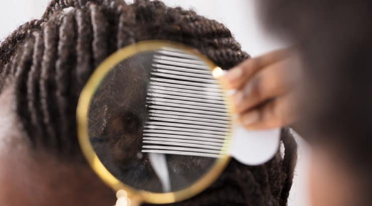 Do Braids Damage Your Hair? & Damage Prevention Tips