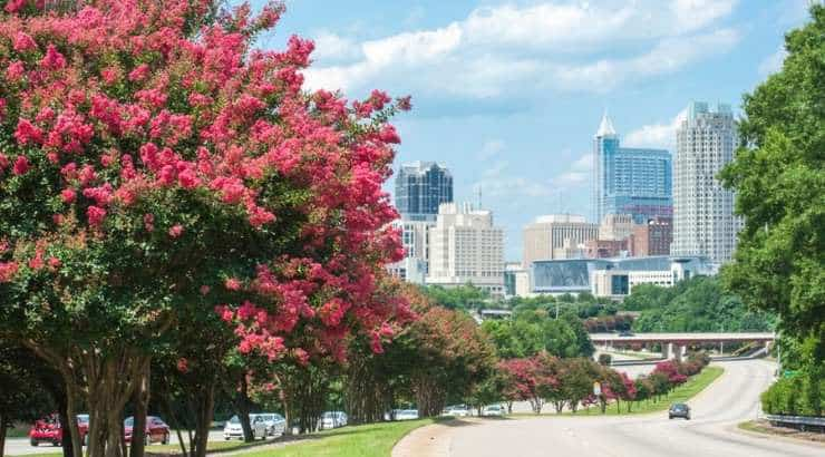 5 Best Raleigh Neighborhoods For Black Families, Young Professionals & Singles –North Carolina