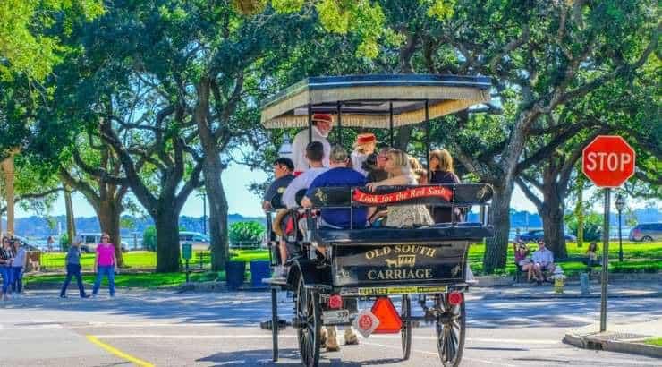 Charleston's Demographic